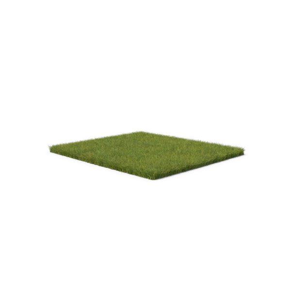 Grass-Patch